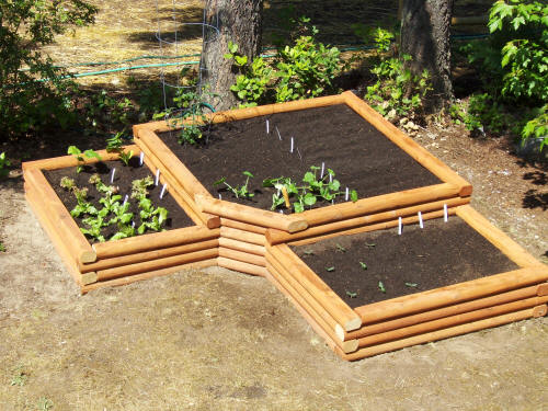 Self sufficient living for Garden designs with raised beds