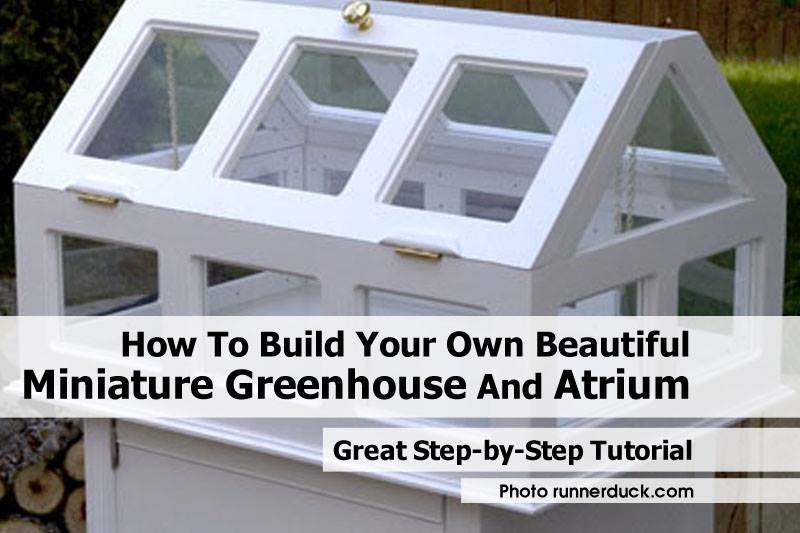 Make Your Own Miniature Green House Craft Like This
