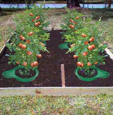 Gardening Ideas For Beginners | New House Designs